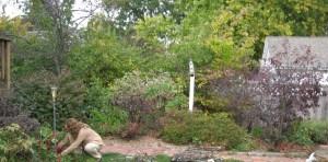 Kelli in Garden (2)